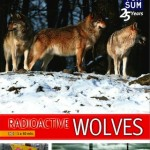 Chernobyl's Radioactive Wolves